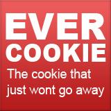 Cosa sono e come eliminare Evercookie, nuova minaccia privacy web
