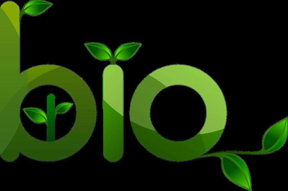 bio-web